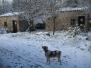Neve a Fraiga